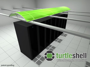 Turtle Shell Graphic